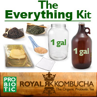 best kombucha kit