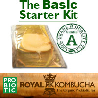 buy kombucha basic starter kit