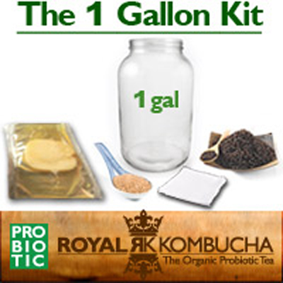 one gallon kombucha starter kit