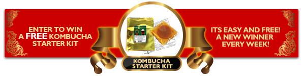 Free Kombucha