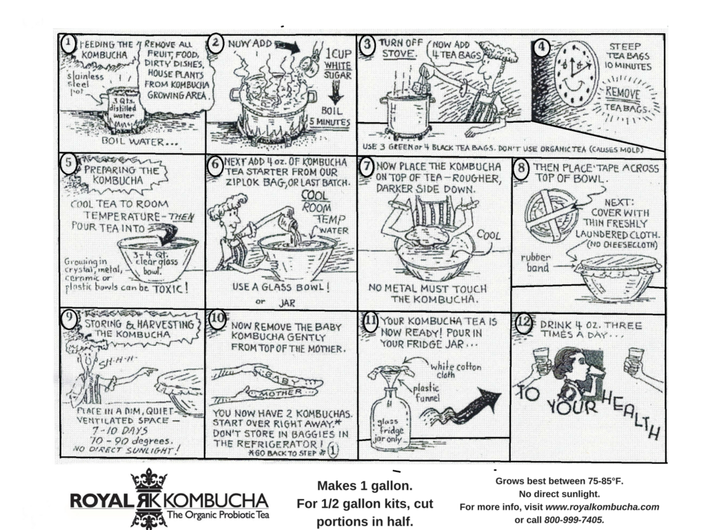 Kombucha Brewing Instructions