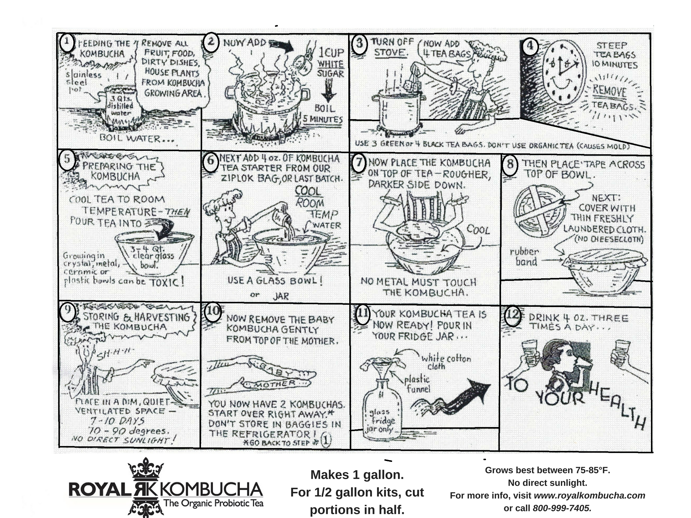 Kombucha Instructions