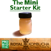 mini kombucha starter kit
