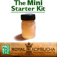 mini kombucha starter kit